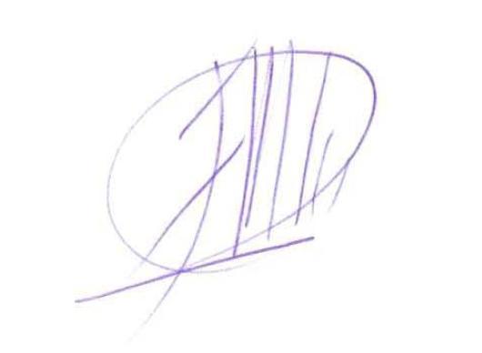 Firma Javier Galán